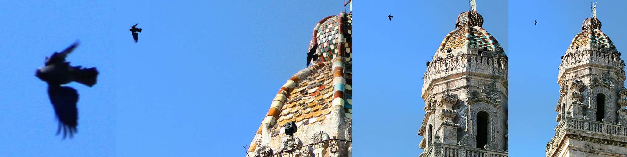 Il campanile Restaurato